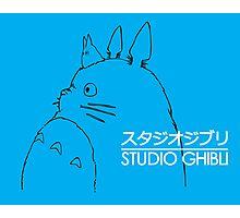 TOTORO BLUE Photographic Print
