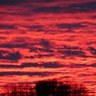 March Sunset. 2014 by MaeBelle
