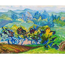 Summer Fields Original Oil Painting by Ekaterina Chernova Photographic Print