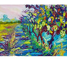 Grape Vines Original Oil Artwork by Ekaterina Chernova Photographic Print