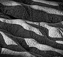 Death Valley Shadows by CarolM