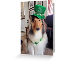St. Patrick's Collie Dog Greeting Card