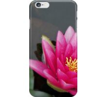Pink water flower iPhone Case/Skin