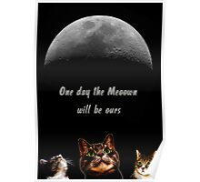 Cats & the moon Poster
