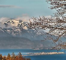 The Homer Spit by Dyle Warren