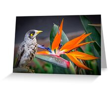 Bird in Paradise Greeting Card