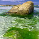 Rock of Envy - Dora Point, Tasmania by clickedbynic
