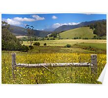 Pyengana Valley - Tasmania Poster