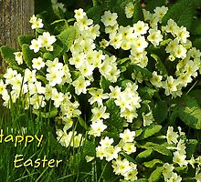Happy Easter Wishes  by hootonles