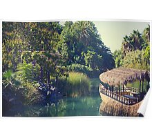 Tropical Scenery Poster