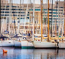 Vibrant Port by PatiDesigns