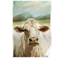 """""""Sunny Day Moo"""" Poster"""