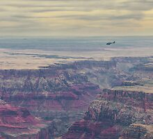 Flying over the grand canyon by Nelson Mineiro