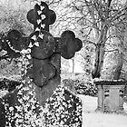 Infrared Headstone by Paul Woloschuk