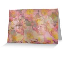 The Story of Camouflage Spring Fairies Greeting Card