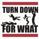 Turn Down For What? by racooon
