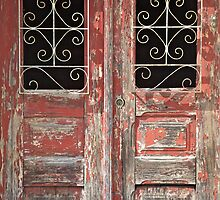 Weathered Red Wood Rustic Door with Peeling Paint by David Letts