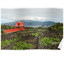 Wineyard in Pico, Azores Poster