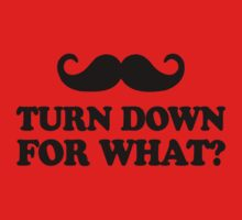 Mustache Turn Down For What? by racooon