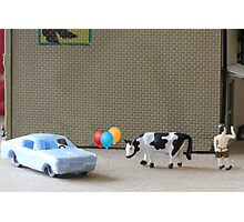 English is a difficult language!  Here are some examples of dipthongs:  car, balloon, cow, Delbert's. Photographic Print