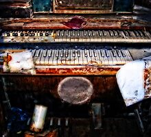 An Organ After Hurricane Katrina by mikerigamer