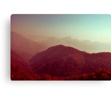 Crimson landscapes Canvas Print