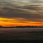Burning Sunrise by wanderingtrucki