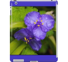 pretty blue pair iPad Case/Skin