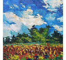 Corn Field Blue Sky Original Oil Paintnig by Ekaterina Chernova Photographic Print