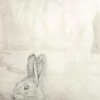 Chinese Zodiac - The Rabbit by KirstenOnRedB