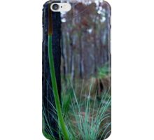 Grass Tree (Xanthorrhoea) iPhone Case/Skin