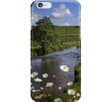 Beyond the Daisies iPhone Case/Skin