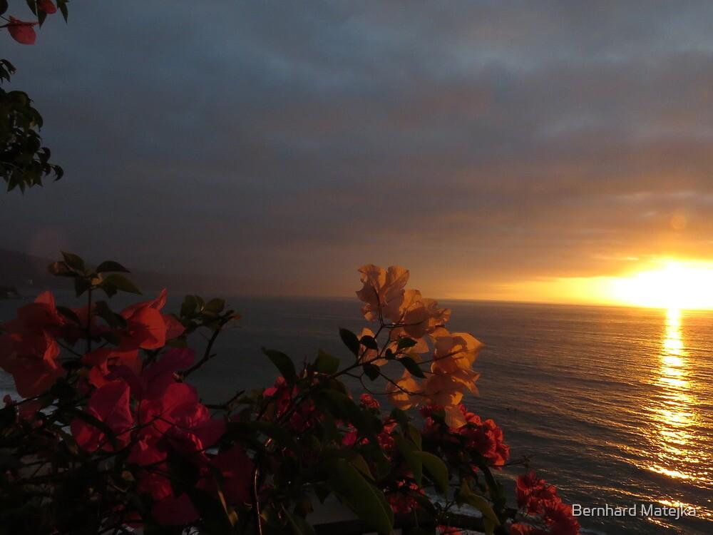 springtide's glow - brillo de la primavera by Bernhard Matejka