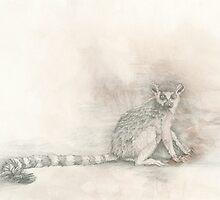 Curious Lemur by KirstenOnRedB