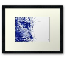 Close to the Tabby Framed Print