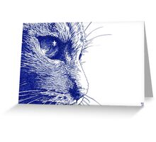Close to the Tabby Greeting Card