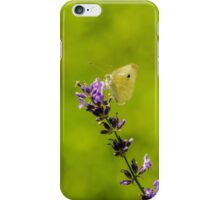 Small White Butterfly On Lavender iPhone Case/Skin