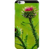 Budding Thistle iPhone Case/Skin