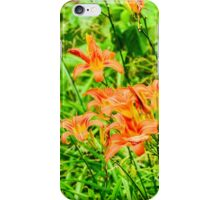Daylilies - Tiger Lilies iPhone Case/Skin