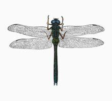 Dragonfly Vintage Illustration Kids Tee