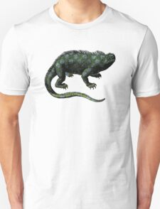 Vintage Iguana Illustration T-Shirt