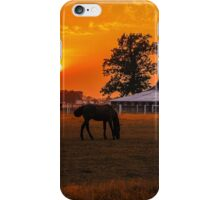 The Beauty of a Rural Sunset iPhone Case/Skin