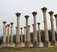 Capitol Columns, National Arboretum by Kelly Morris