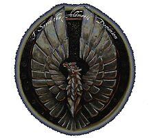 I Serve the Aldmeri Dominion by taylorjane01
