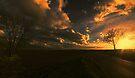 Sunset Panoramic by Nigel Bangert