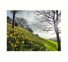 The Arrival Of Spring In Derry/Londonderry..........N Ireland Art Print