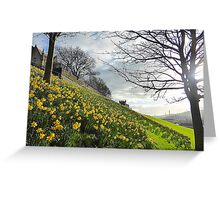 The Arrival Of Spring In Derry/Londonderry..........N Ireland Greeting Card
