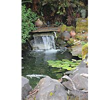 Tranquil View Photographic Print
