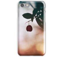 Winter berry iPhone Case/Skin