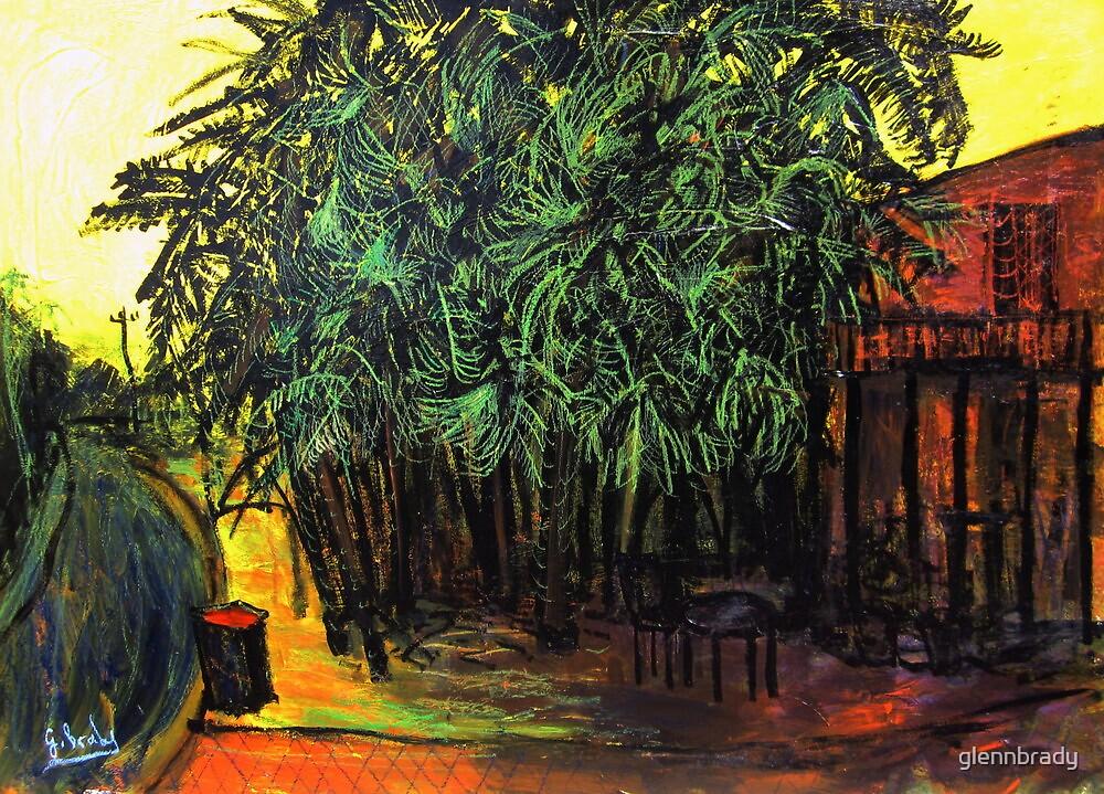 palm tree's by glennbrady